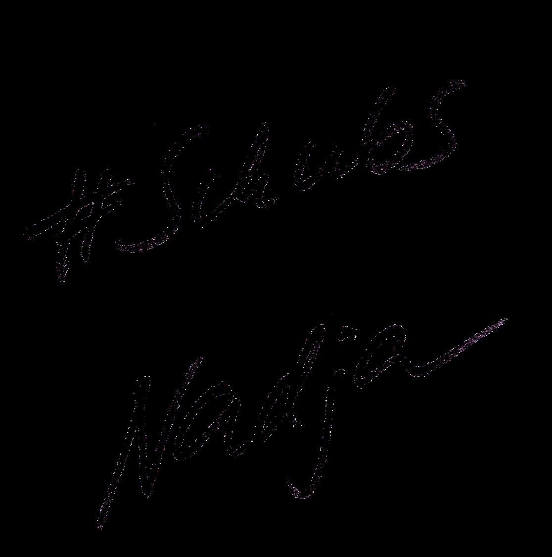 Schubs Signatur