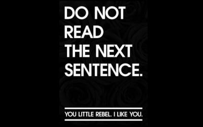 Wie eine echte Veränderung durch Rebellen möglich wird und warum ich ein Rebell bin